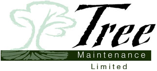 Tree Maintenance Limited
