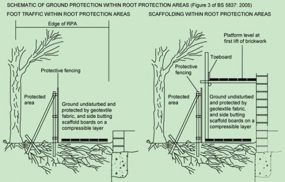 Root protection diagram from BS 5837: 2005