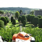 View from the Painswick Yews