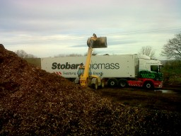 Loading for Biomass